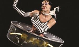 Cirque-Iris-Copy