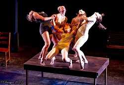 Project 7 Contemporary Dance Company Equiliftrium