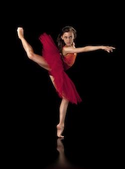 Dance Upon A Dream Season 2