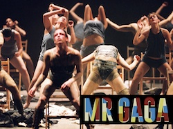 Mr. Gaga documentary