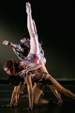 Elisa Monte Dance Company. Photo by Matthew Murphy.