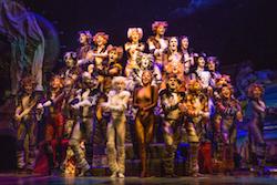 Company of 'CATS' on Broadway Photo by Matthew Murphy.