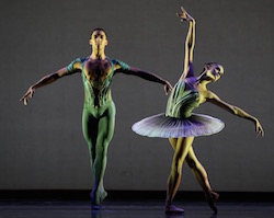 Houston Ballet's Harper Watters. Photo by Amitava Sarkar.