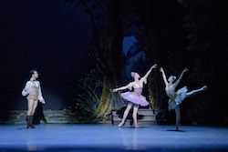 Paulo Arrais, Dusty Button and Misa Kuranaga in Marius Petipa's 'The Sleeping Beauty'. Photo by Liza Voll, courtesy of Boston Ballet.