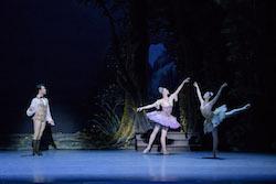 Paulo Arrais, Dusty Button and Misa Kuranaga in Marius Petipa's 'The Sleeping Beauty'. Photo by Liza Voll, courtesy of Boston Ballet.