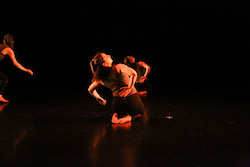 Sasso and Company's 'Deeply Rooted'. Photo by Olivia Blaisdell.