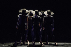 The Harvard Dance Project in 'WILL', choreographed by Shamel Pitts. Photo by Liza Voll Photography.