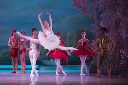 The Washington Ballet in 'The Nutcracker'. Photo by Theo Kossenas.