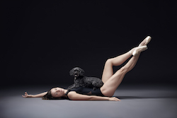 'Dancers and Dogs'. Photo by Ian Kreidich and Kelly Pratt.