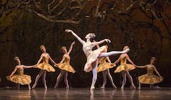 Xiao Nan Yu with artists of the Ballet in 'The Sleeping Beauty'. Photo by Aleksandar Antonijevic.