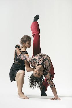 Malpaso Dance Company. Photo by Nir Arieli.