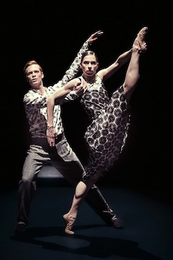 Nederlands Dans Theater in Sol León and Paul Lightfoot's 'Shut Eye'.