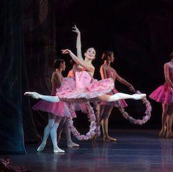 American Ballet Theatre's Skylar Brandt.